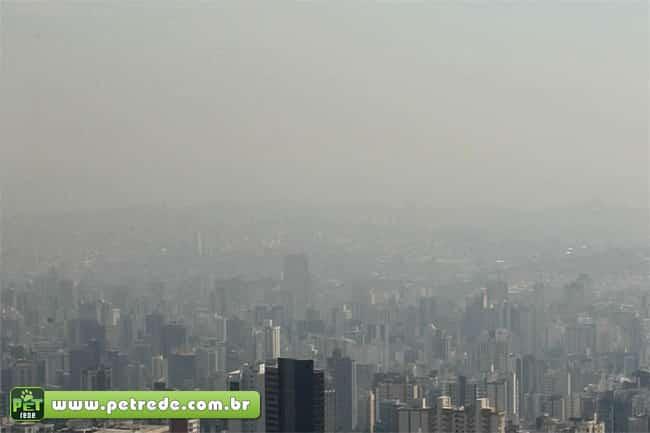 Proteja seu pet da poluição e do ar seco