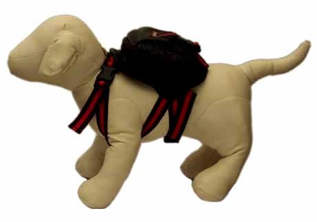 Empresa cria mochila para cães usarem no passeio com o dono
