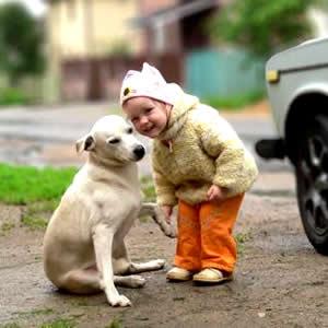 petrede-menina-com-cachorro