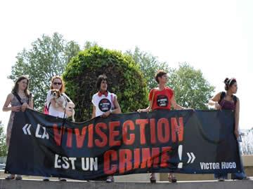 Franceses protestam contra dissecação de animais