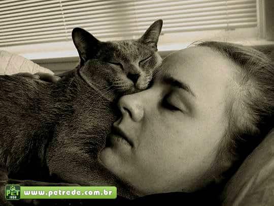 mulher-gato-rosto-dormindo-carinho-petrede