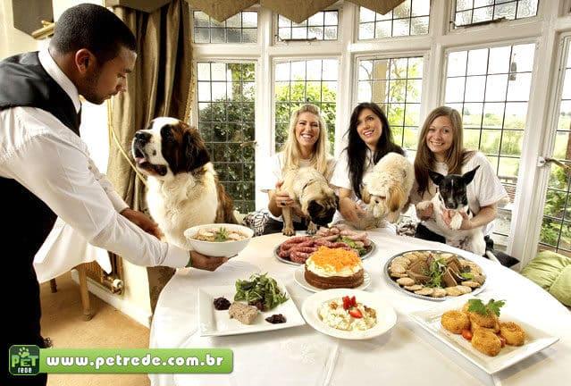 Donos também optam por dieta vegana para animais de estimação