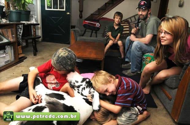 Adoção de animais colabora com a saúde física e emocional das famílias