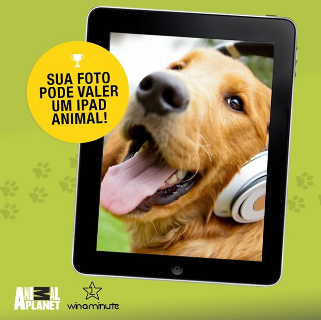 promocao-animal-planet