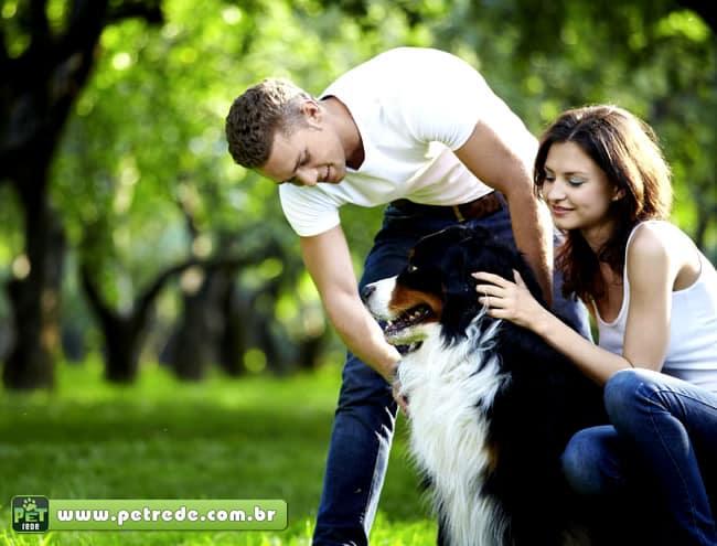 Pet geração saúde