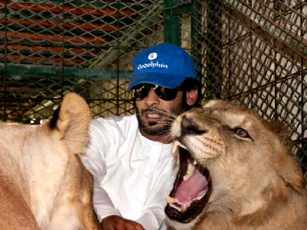 Nova moda entre bilionários é ter leões e tigres de estimação