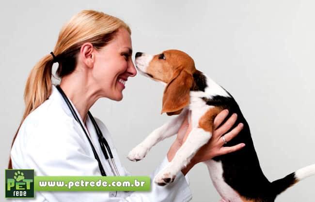 cachorro-filhote-consulta-medico-veterinaria-alegria-feliz-exame-petrede
