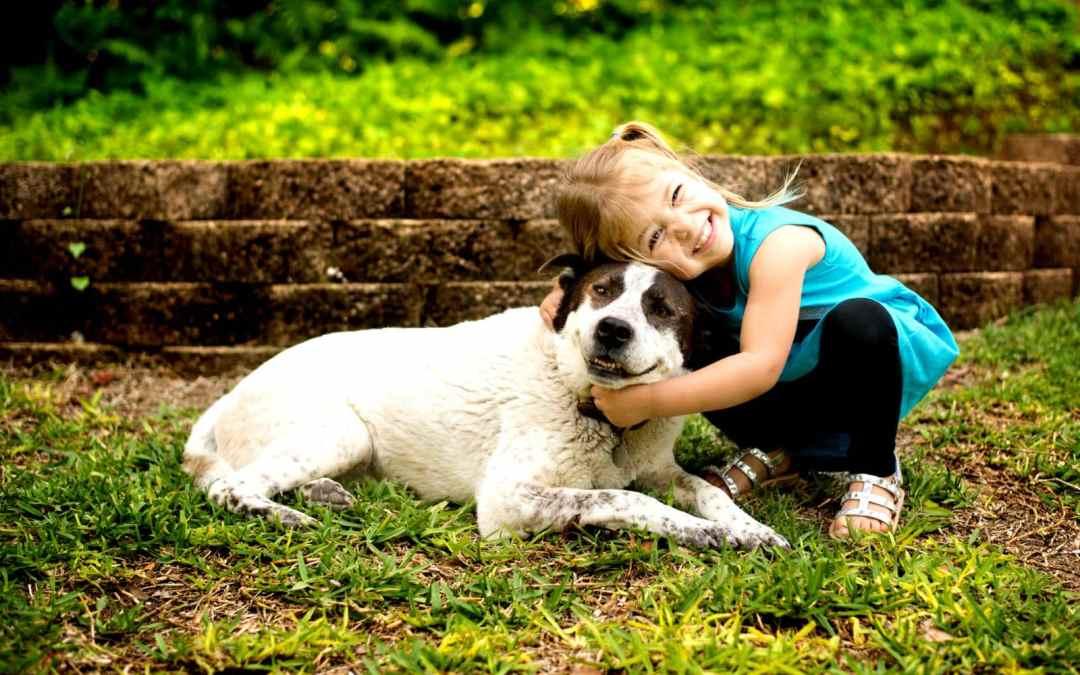 Pesquisa mostra que donos de cachorros vivem mais