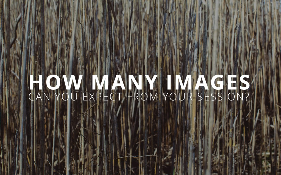 How many images can you expect from your session?
