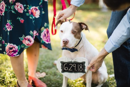 Hand & Hand & Paw Engagement Session on the Streets of Annapolis 06