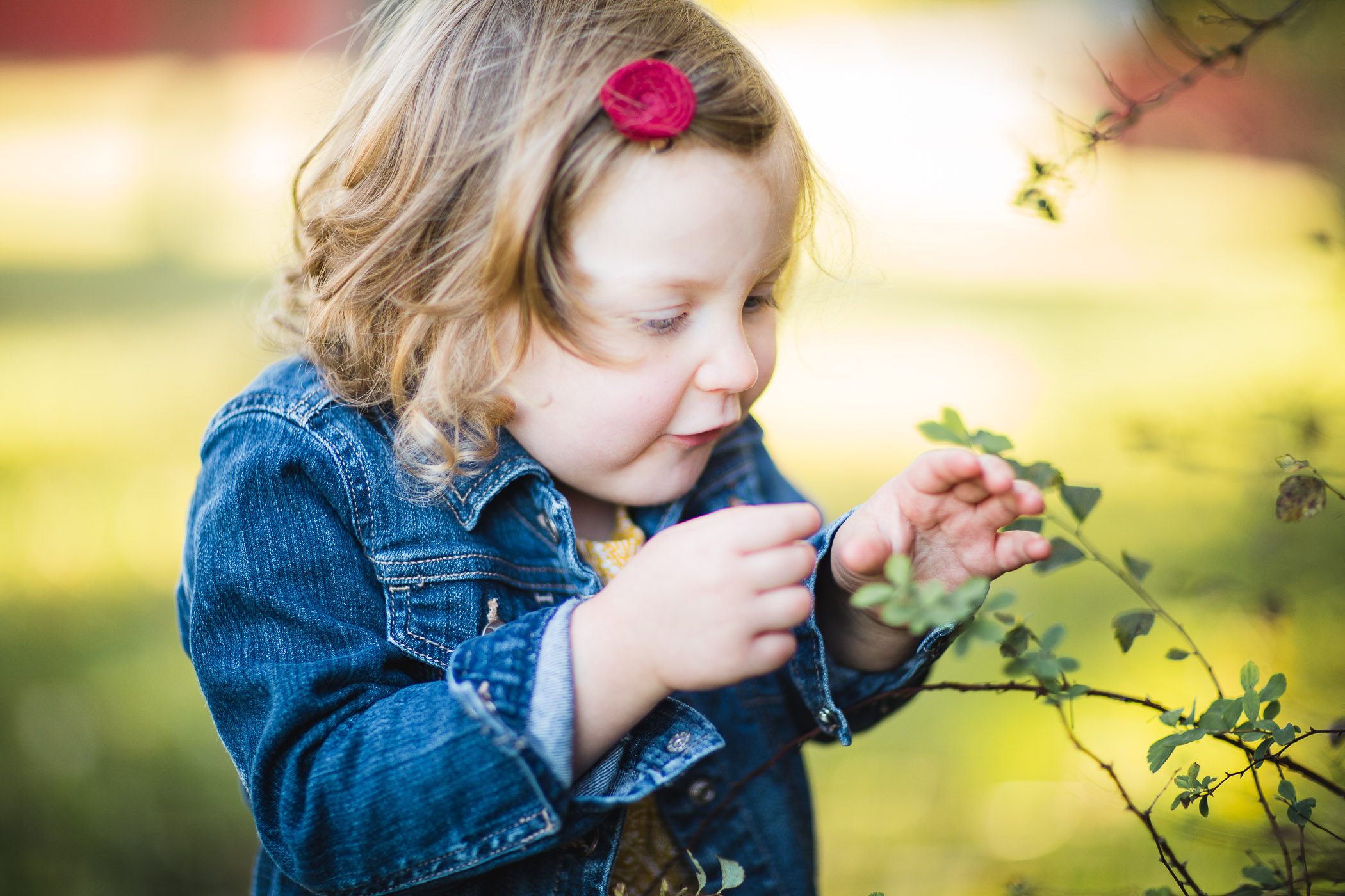 A Colorful Two-Part Autumn Family Session from Felipe 18