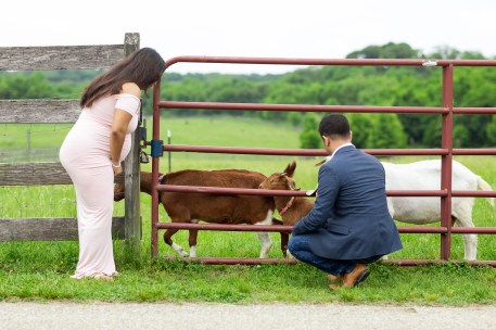 A Beautiful Maternity Session from Felipe at Kinder Farm Park 06