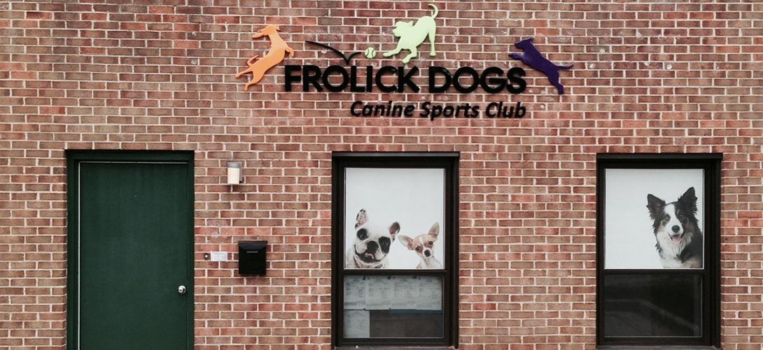 club de fitness et sports pour chiens