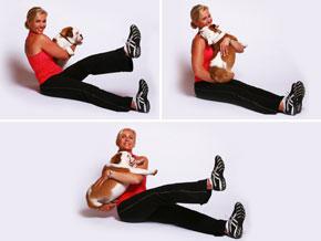 yoga et doga chiens, des activités pour chiens stressés