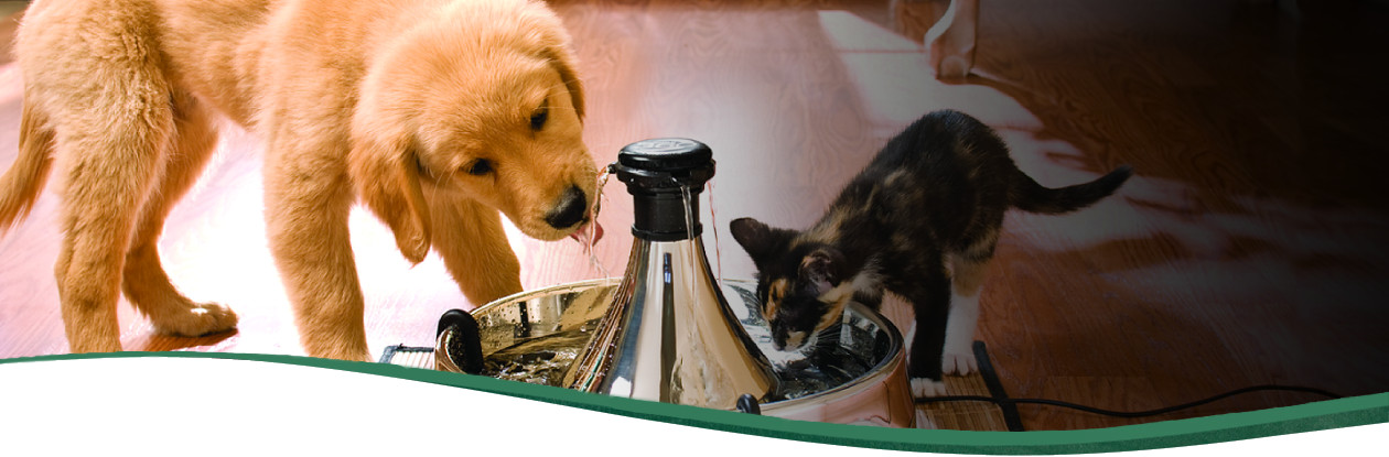 Pets Fountain Drinkwell 360