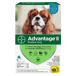 Advantage II Flea Treatment 11 to 20 lbs.
