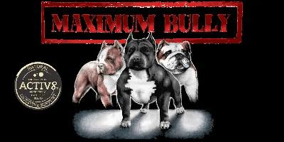 Maximum Bully