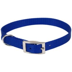 Coastal Single-Ply Dog Collar, Blue.
