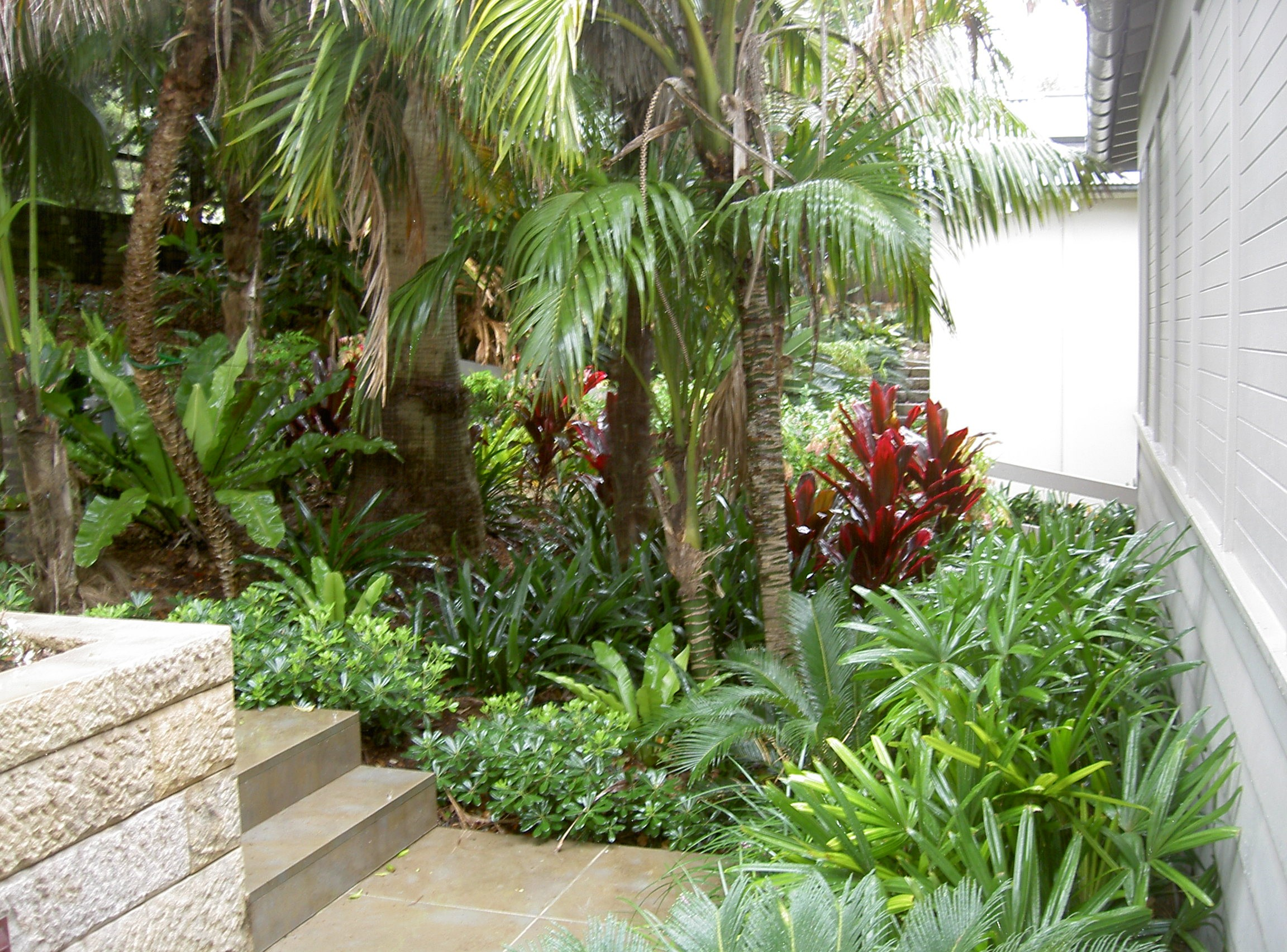 Tropical Garden Designs For Small Gardens – Thorplc Com