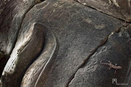 Angkor Bat // Cambodge - 2009