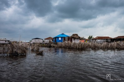 """Des branchages séchés sont immergés et soigneusement entretenus six mois durant. Ces """"acaja"""" (pâturages aquatiques clôturés) permettent aux pêcheurs de procéder à la récolte: de grands filets sont tendus pour l'occasion et devraient renfermer suffisamment de poissons pour faire vivre toute leur famille pendant plusieurs mois. // Ganvié - 2017"""