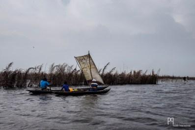 Des sacs de riz cousus servent de voile lorsque le vent pousse les embarcations vers le large. // Lac Nokoué - 2015