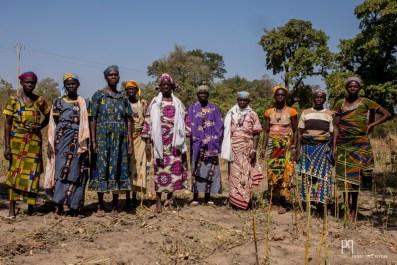 Appartenant à un collectif de 50 femmes, ces Gando - descendants d'esclaves Bariba - participent à un projet de jardins coopératifs et autogérés. Un terrain, ainsi que de l'eau, ont été mis à leur disposition par une fondation locale; les récoltes servent aux familles et les surplus sont vendus au marché. // Kérou - 2017