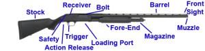 Best Shotgun for Beginners & Home Defense  Pew Pew Tactical
