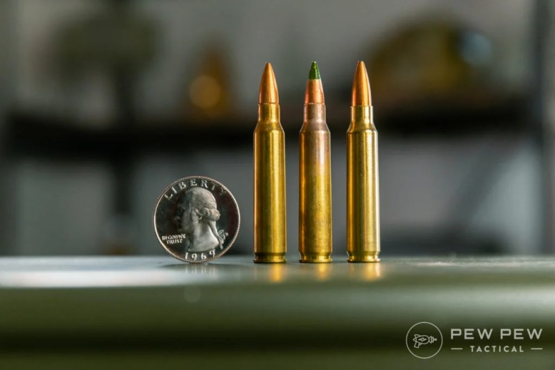 Assorted 5.56 Rounds (XM193, XM855, Gold Medal 69gr)
