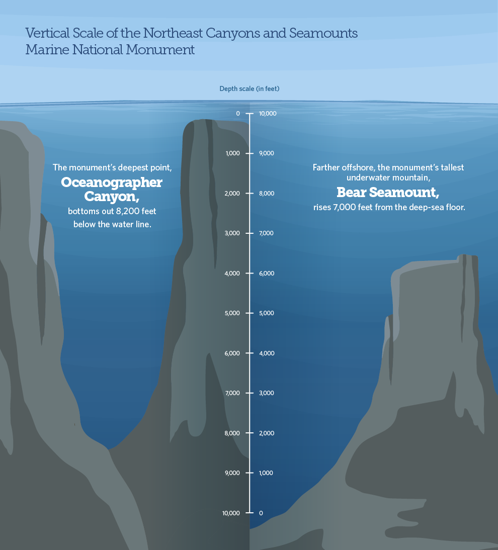 Infographic about seamount depths