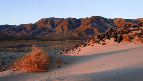 Five Reasons to Protect the California Desert   The Pew Charitable Trusts