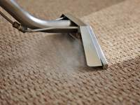 Why It Is Essential To Keep Carpets Clean? | Pfacility