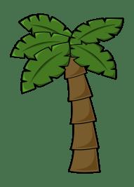 coconut-tree-1294165_1280