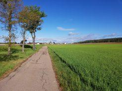 Bittgang am 1. Mai nach Amberg