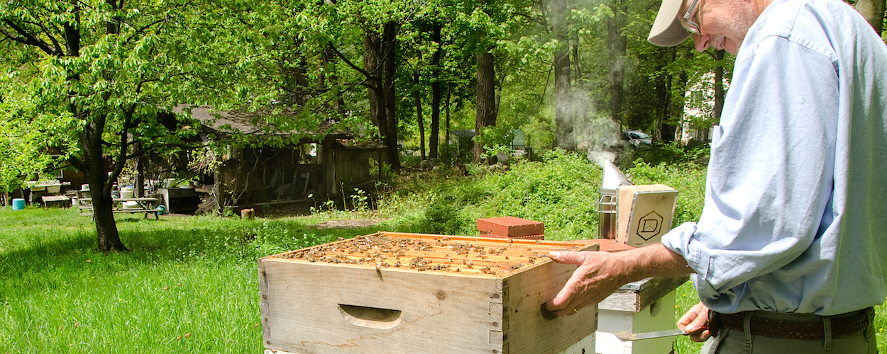 Beekeeping For The Future Pfeiffer Center