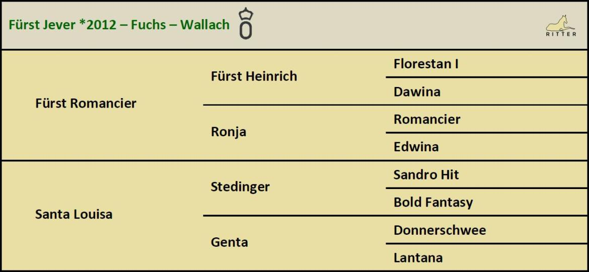 Pedigree FÜRST JEVER Wallach v. Fürst Romancier x Stedinger, Oldenburger, geb. 2012