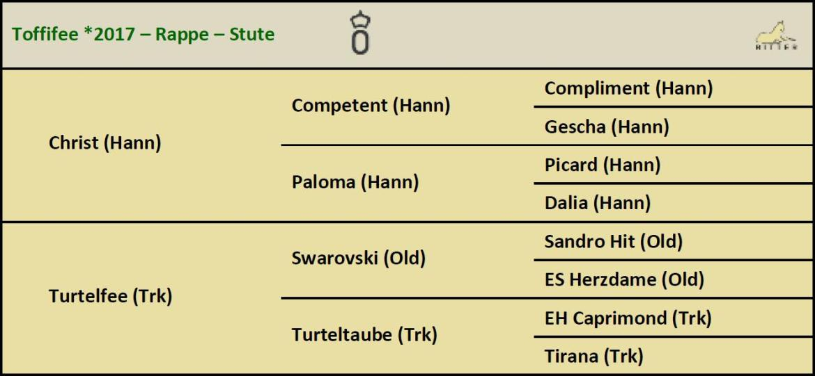 Pedigree TOFFIFEE Stute v. Christ x Swarovski, Oldenburger, geb. 2017