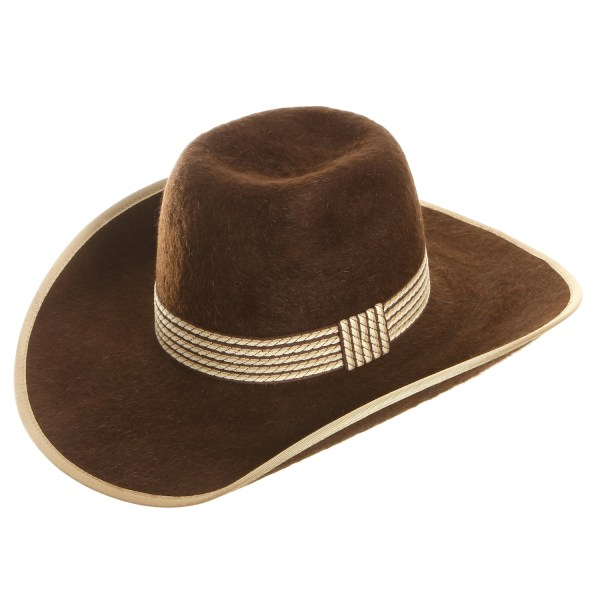 c939d89ef9e 20+ Grizzly Bear Cowboy Hat Pictures and Ideas on Meta Networks