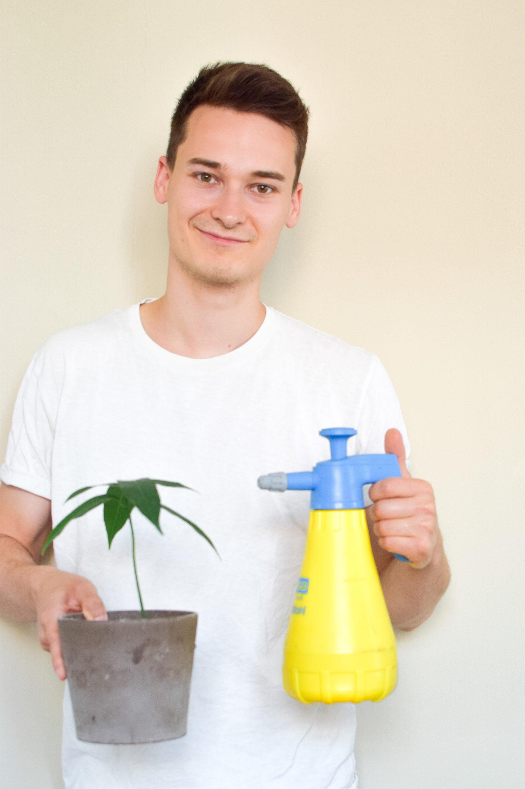 Pflanzen einsprühen