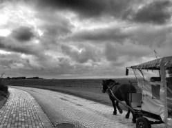 Baltrum Nordsee