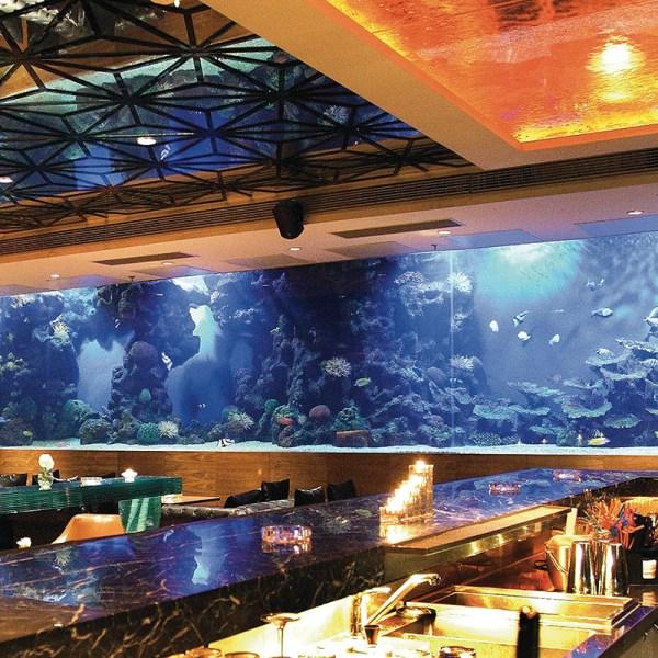 Brace Aquarium Acrylic Sheet - Year of Clean Water