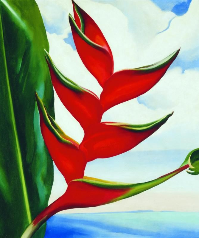 Image result for Georgia O'Keeffe, 'Heliconia: Crab's Claw Ginger,' 1939.