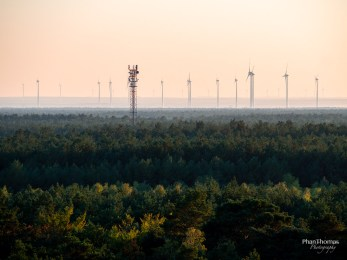 Baumkronenpfad: Windräder