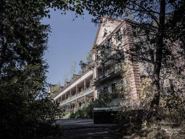 Beelitz-Heilstätten: Rahmende Vegetation
