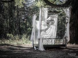Beelitz-Heilstätten: Ein Bett im ... äh, Wald?