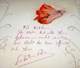 """Wir hatten Glück und konnten """"Das Elfen-Bestimmungsbuch"""" auch von Sébastien Perez signieren lassen."""