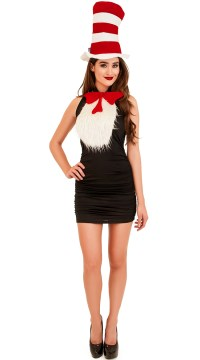Sexy Cat in the Hat Costume