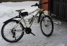 Whistle Miwok 1054 V Dağ Bisikleti