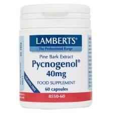 Lamberts Pycnogenol Συμπλήρωμα Διατροφής μεΕκχύλισμα από το Φλοιό του Πεύκου Maritime40mg 60tabs