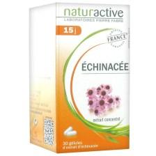 Naturactive Echinachea Συμπλήρωμα Διατροφής για Φυσική Ενίσχυση του Οργανισμού & Προστασία του Ανοσοποιητικού - 30 caps